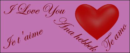 Ich liebe dich in allen Sprachen - Liste